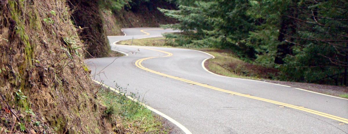 Liquid Road
