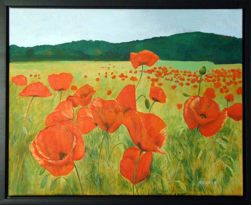 "Field of Poppies, 16"" x 20"", O/C #$300.00"