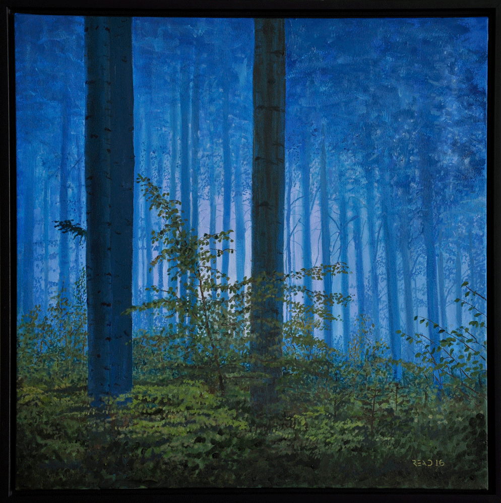 """Early Morning Forest, 24""""x 24"""" O/C - SOLD"""