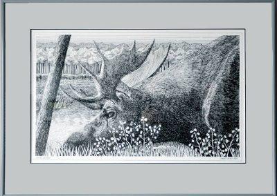 Moose Meadow, Pen & Ink, $75.00