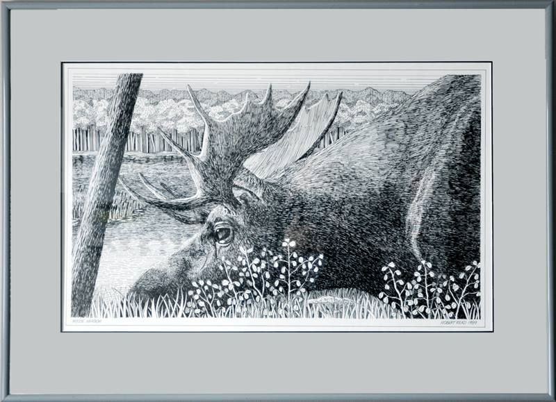 Moose Meadow, Pen & Ink, $75.00