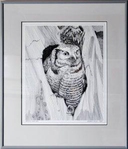 Northern Hawk Owl, Pen & Ink, $75.00